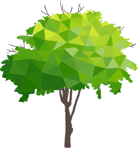 Is Digital Transformation the Key to Environmental Sustainability in Education?